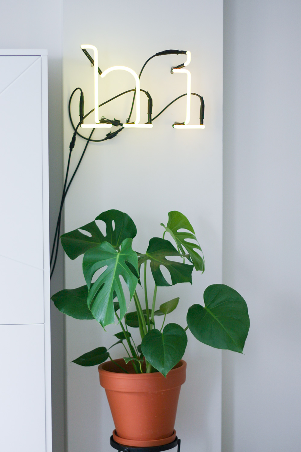 seletti-neon-letters-fonq-urban-jungle-monstera-4